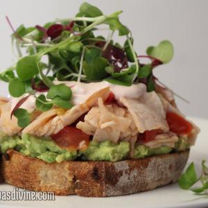Danielles-Super-Sandwich