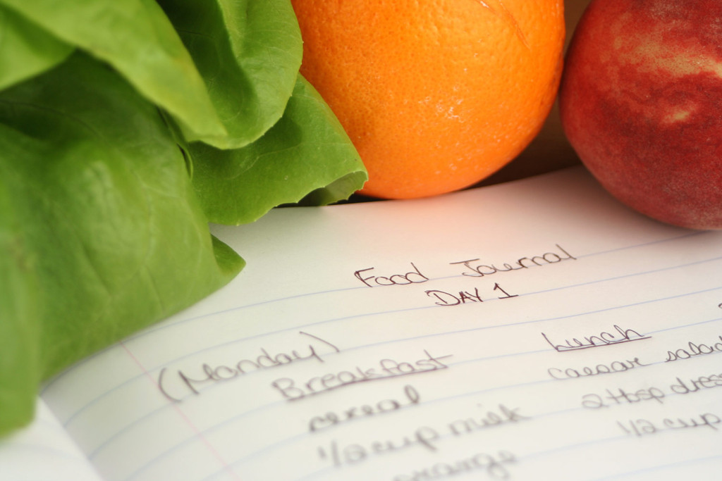 Food and Diet Journal