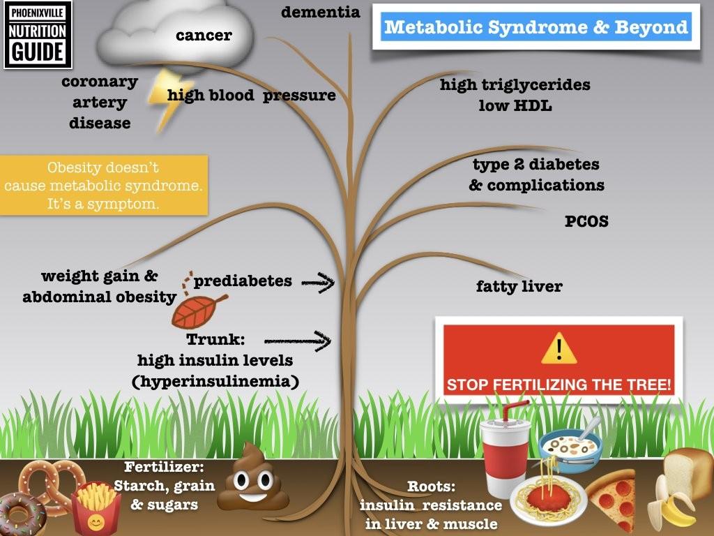 Tree graphic of growing disease through diet